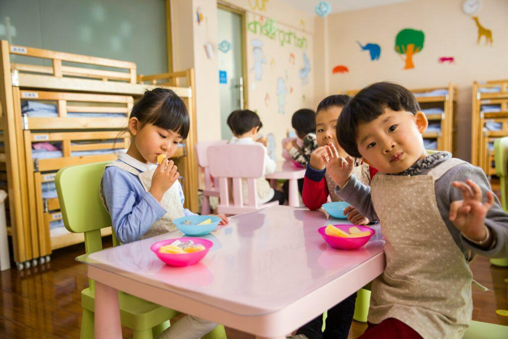 What is early childhood education about?