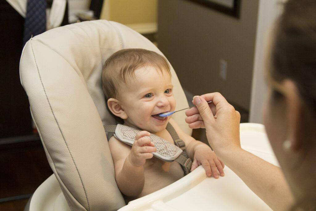 Gerber Organic Baby Food Review